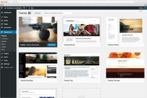 Tutorial completo como caixar e instalar o WordPress em português Br
